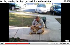 dog-returning-soldier-video