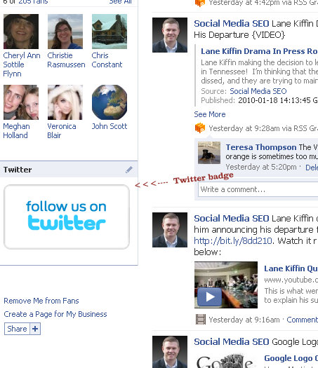 fbml facebook fan page 3