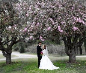 flickr wedding photos