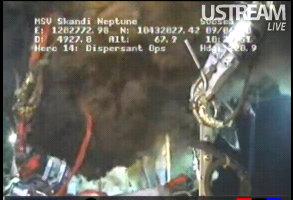 bp live oil spill feed2
