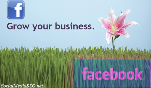 grow your business facebook1