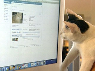 pets on facebook