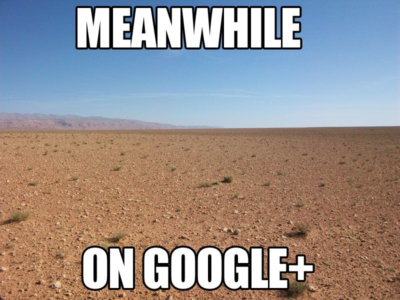 meanwhile on google plus