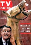 horse meat for sale