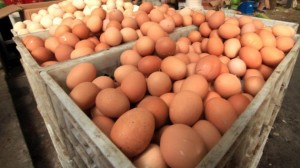 Man-eats-28-raw-eggs-dies