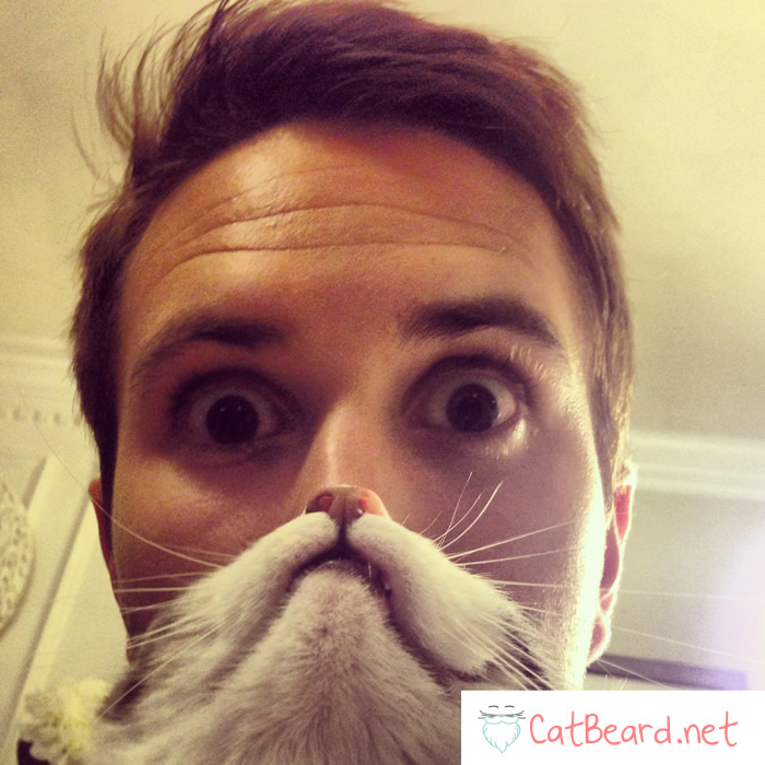 cat beard couple