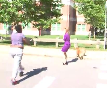 news-crew-attack-rocks-dog