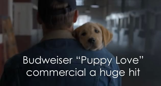 best-super-bowl-commercial-budweiser-puppy-love