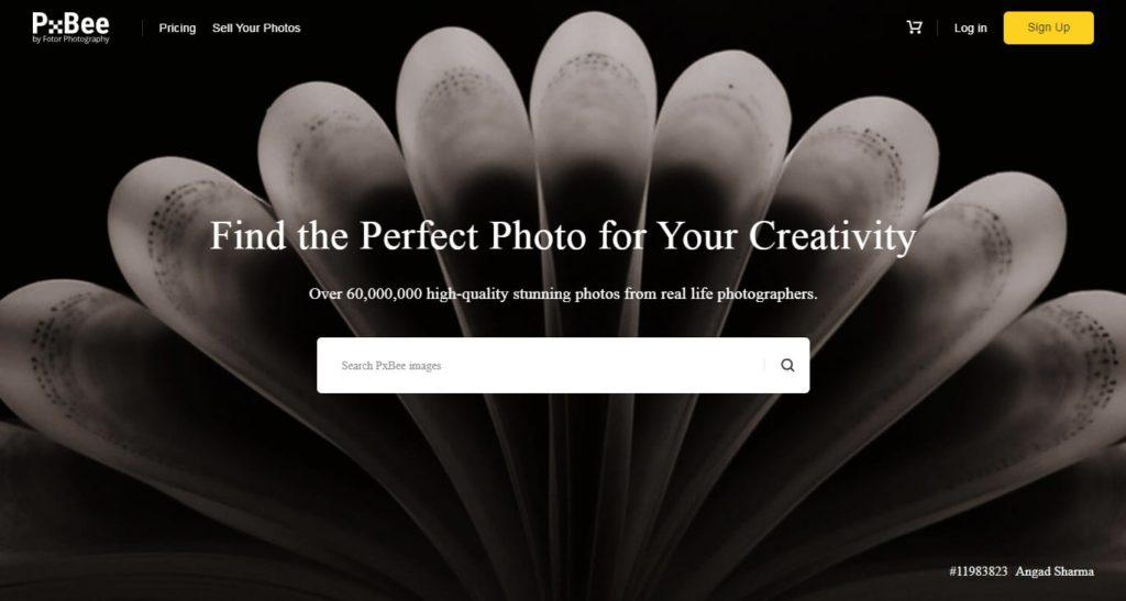 36 web design tools pxbee
